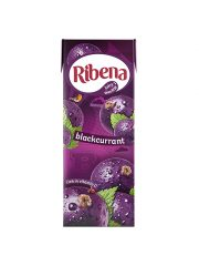 Ribean Blackcurrant Carton