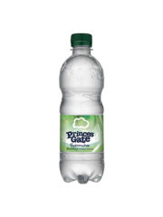 Princes Gate Sparkling Water 500ml